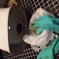 南部町 トイレ詰り修理
