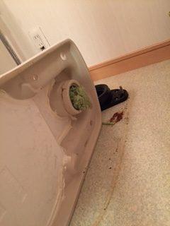掛川市西大渕 洋式トイレ脱着